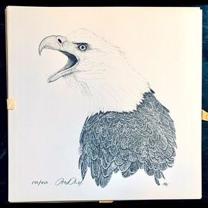 Pen&Ink unframed bald eagle print by Martin May